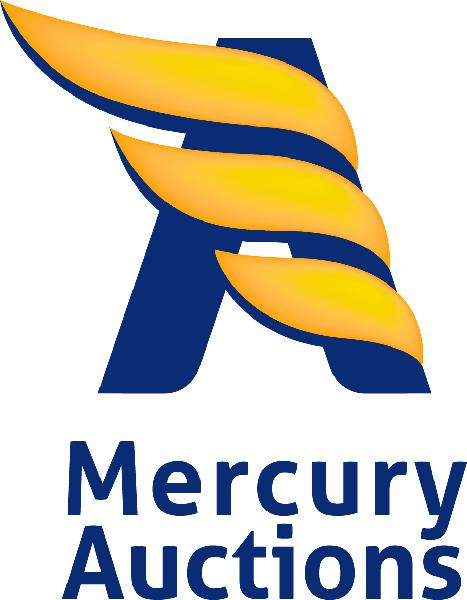 mercury-auctions-srl
