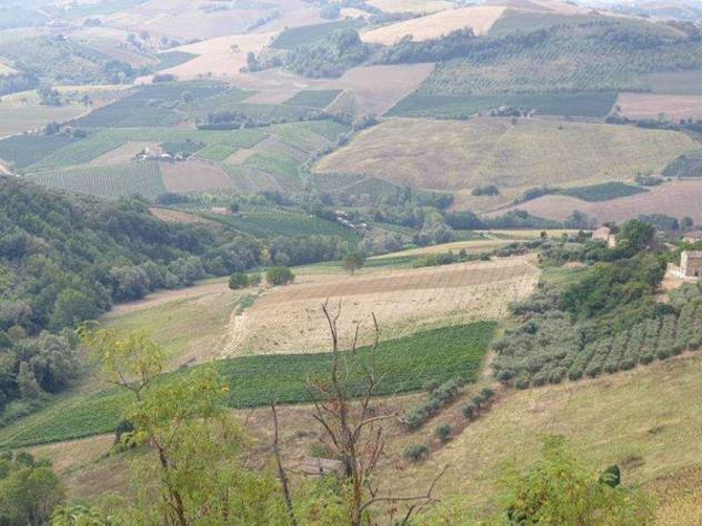Terreno di 70000 m² in vendita a carassai