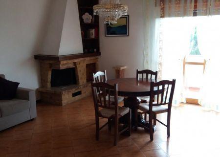 Siena—2 camere via dante 16 (zona petriccio)