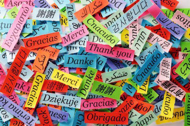 Lezioni inglese francese tedesco