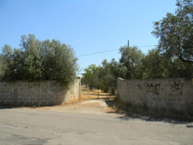 Terreno di 15000 m² in vendita a monteroni di lecce