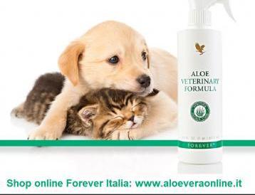 Prodotti aloe per animali