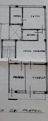 Affittasi appartamento in viale dei platani vicino