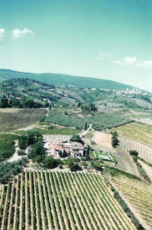 Firenze e provincia toscana affittasi 5 ettari di vigneto