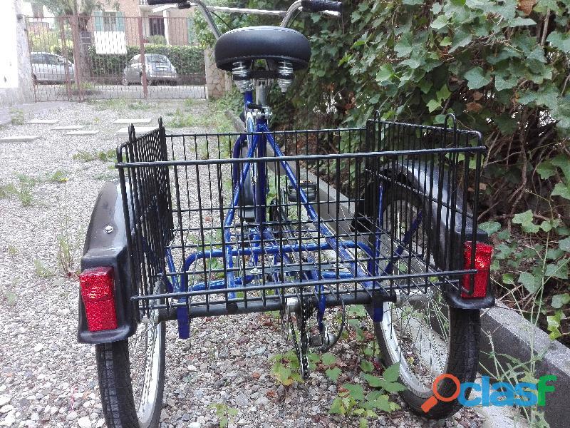 Bicicletta con cesto porta spesa, cane, gatto, 3 ruote