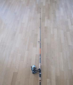 Mitchell canna da pescaspinning completa