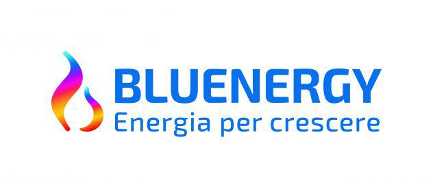 Coordinatore senior energia – gas – servizi. con