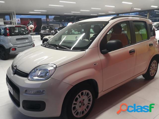 Fiat panda gpl in vendita a sirolo (ancona)