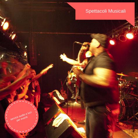 Spettacoli musicali service audio ed eventi