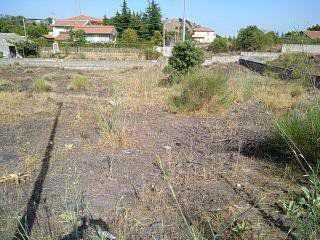 Terreno agricolo 1010 mq prospetto strada