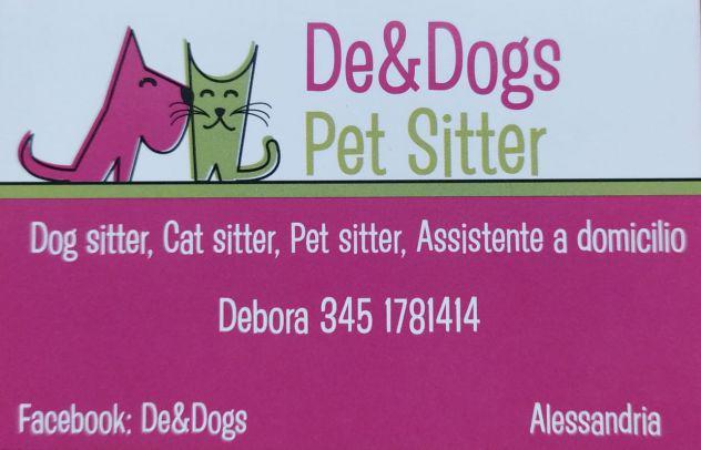 Dog sitter, pensione per animali, pet service, assistente a