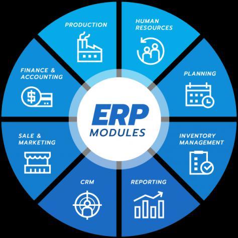 Master enterprise resource planning sap