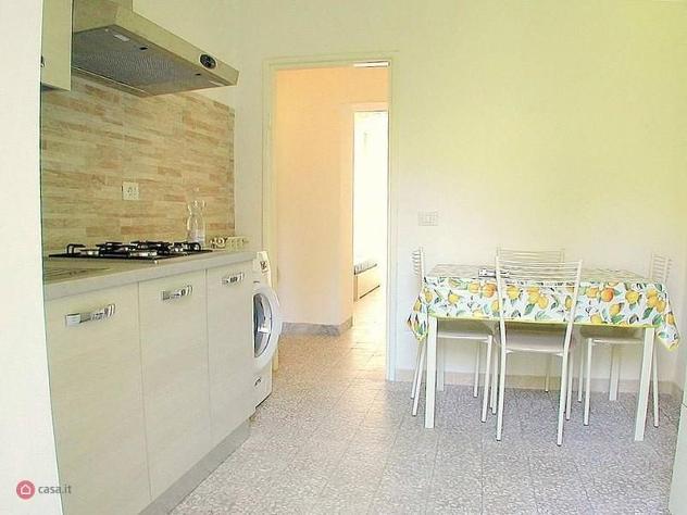 Appartamento in affitto a monte argentario