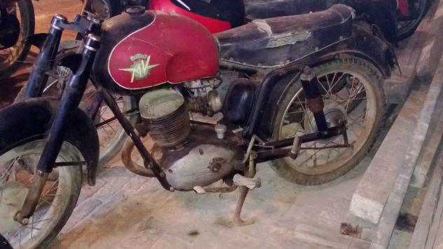 Mv agusta mv agusta cc 125 immatricolata 1950