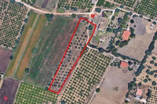 Terreno agricolo in vendita a siracusa