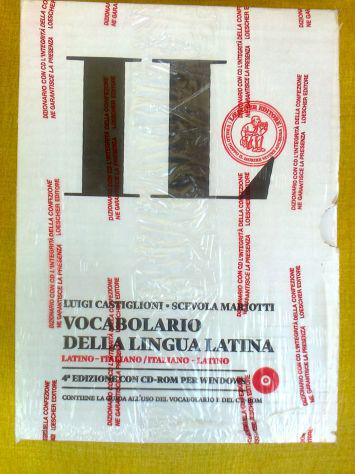 Lezioni di latino e discipline umanistiche