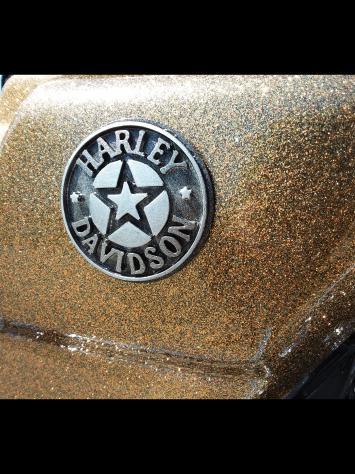 Coperchio Accesso Frizione Anticipo Automatico Willie G Skull x Harley Davidson Sportster XL e XR 04-UP