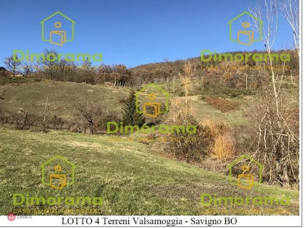 Terreno agricolo in vendita a valsamoggia