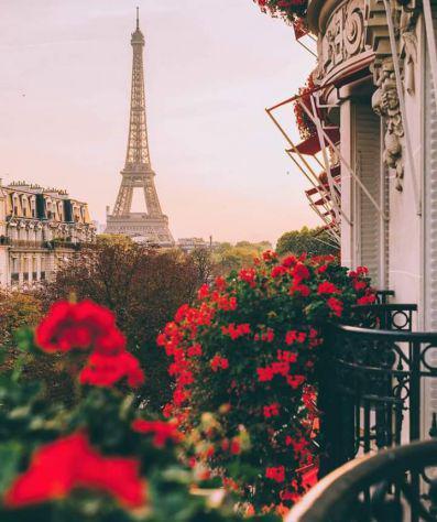 Francese prof. madrelingua esperienza pluriennale