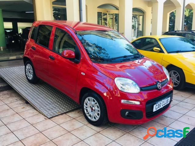 FIAT Panda diesel in vendita a Morano Calabro (Cosenza)