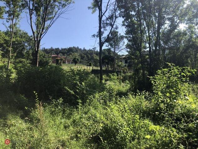 Terreno edificabile in vendita a montegrino valtravaglia