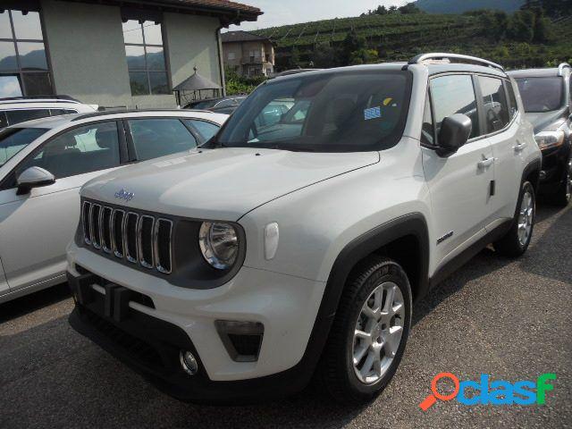 Jeep renegade benzina in vendita a ciriè (torino)
