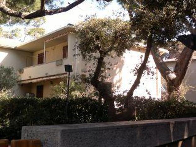 Appartamento in villa san vincenzo 1 a 6 persone