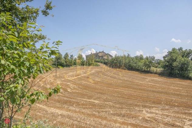 Azienda agricola in vendita a piozzano