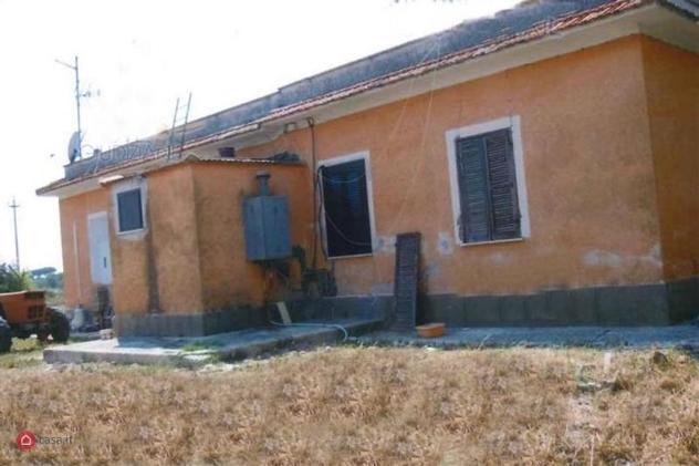 Azienda agricola in vendita a velletri