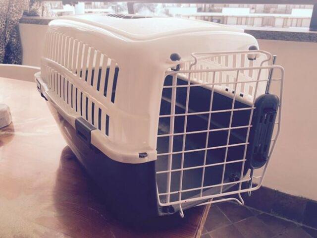 Trasportino cane gatto