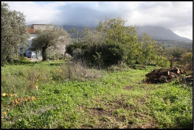 Terreno di 14033 mq in vendita a benevento - rif. 3386767