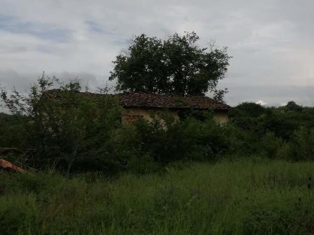 Terreno in vendita a terranuova bracciolini - rif. 3376344