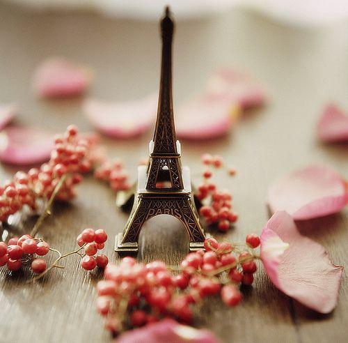 Lezioni e ripetizioni di lingua francese