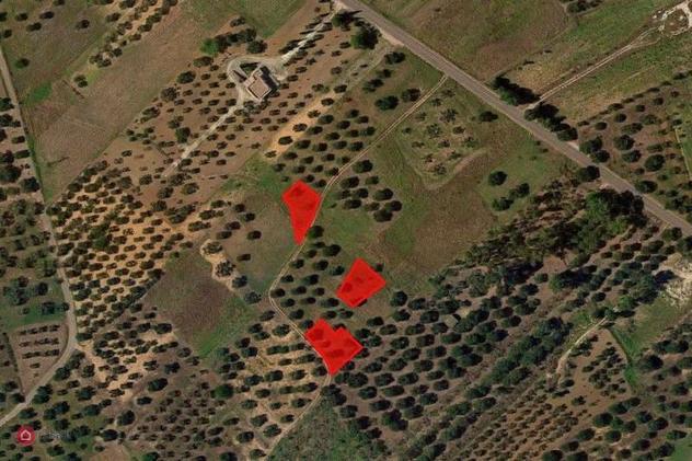 Terreno agricolo in vendita a campi salentina