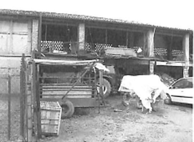 Stalle, scuderie, rimesse, autorimesse di 1288 mq in vendita