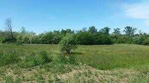 Agricolo - Seminativo a ISOLA - SACRAMENTO, Siracusa