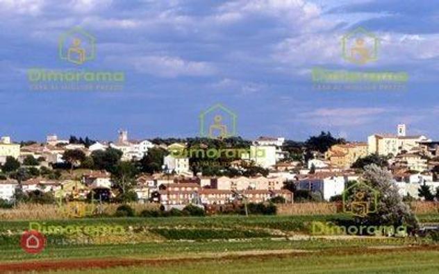 Terreno agricolo in vendita a Collesalvetti