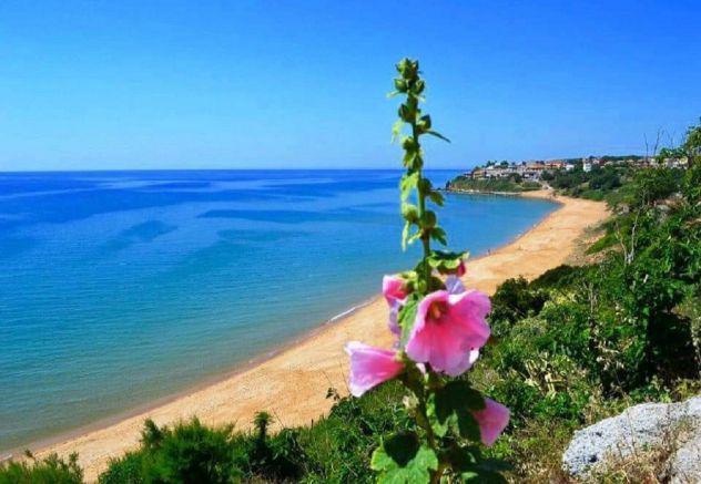 Villa per vacanze con accesso diretto in spiaggia