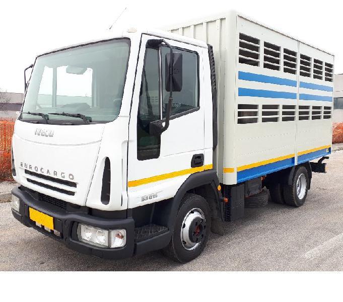 Eurocargo 70e15 trasporto animali vivi
