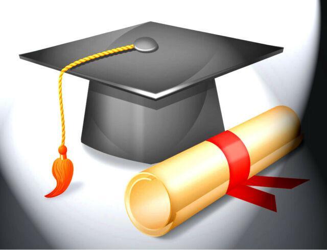 Consulenza e collaborazione stesura tesi di laurea