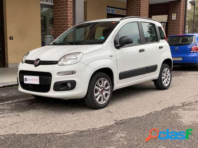 Fiat panda metano in vendita a cologno monzese (milano)