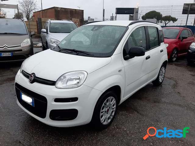 Fiat panda benzina in vendita a fiumicino (roma)