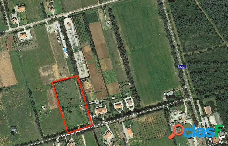 Alghero - 1 locali � 80000 t102
