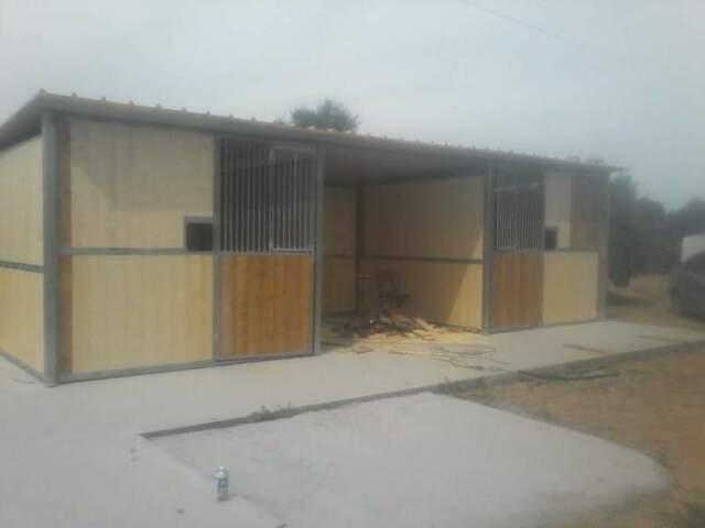 Box cavalli doppio con veranda centrale