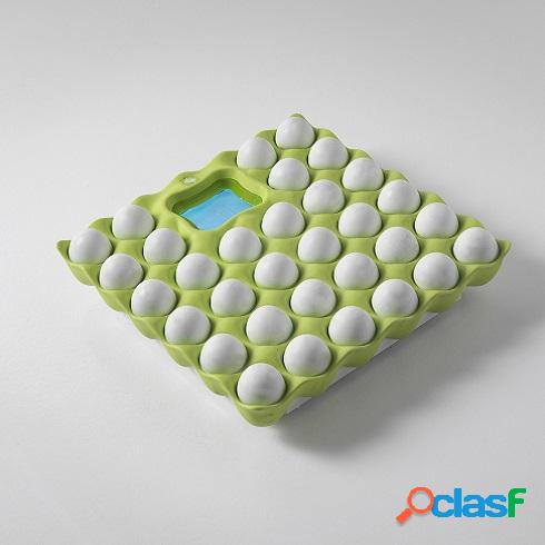 Bilancia eggs