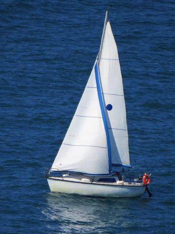 Cabinato a vela metri 7,10