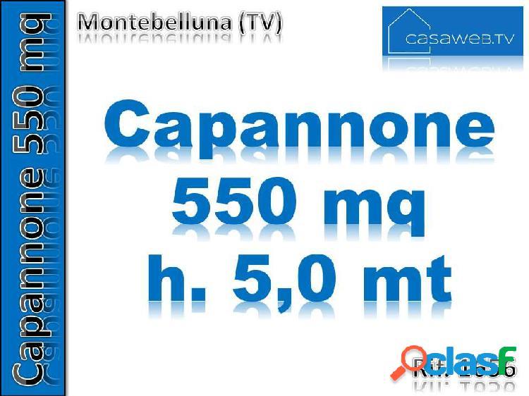 Capannone 550 mq montebelluna (tv) rif. 1656