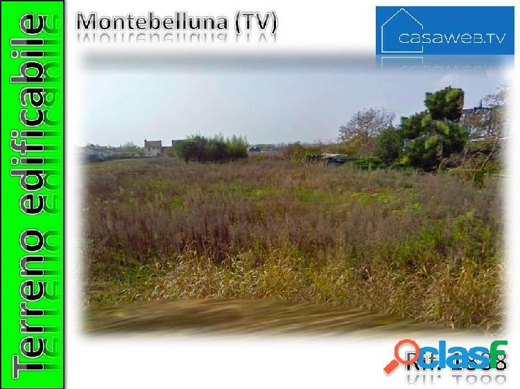 Terreno edif. 3300 mq montebelluna (tv) rif. 1888