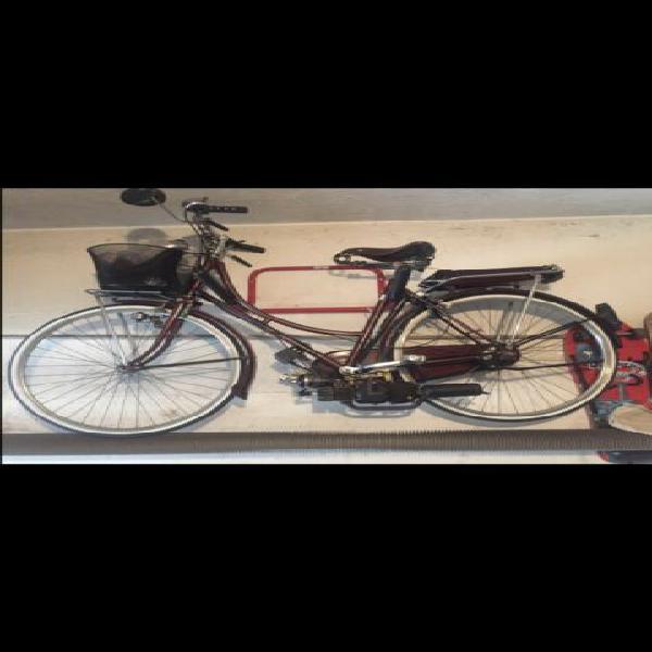 Bicicletta eusebi con motore garelli
