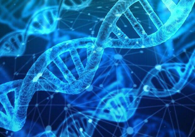 Ripetizioni chimica biologia scienze scuola superiore e
